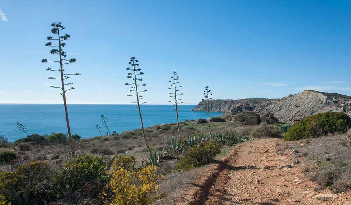 Hiking in Budens - Costa Vicentina Natural Park